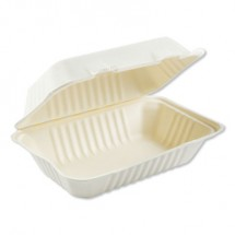 """Bagasse Molded Fiber 1-Compartment White Food Containers, Hinged-Lid, 9"""" x 6"""" 250/Carton"""