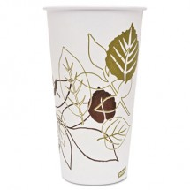 Dixie Pathways Polycoated Paper Cold Cups, 32 oz., 600/Carton