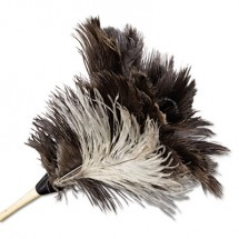"""Professional Ostrich Feather Duster, 7"""" Handle"""