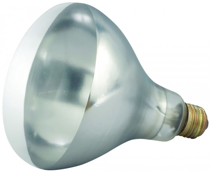 Winco EHL-BW 250 Watt Clear Replacement Heat Lamp Bulb